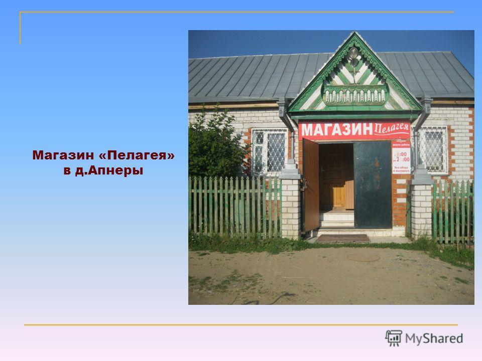Магазин «Пелагея» в д.Апнеры