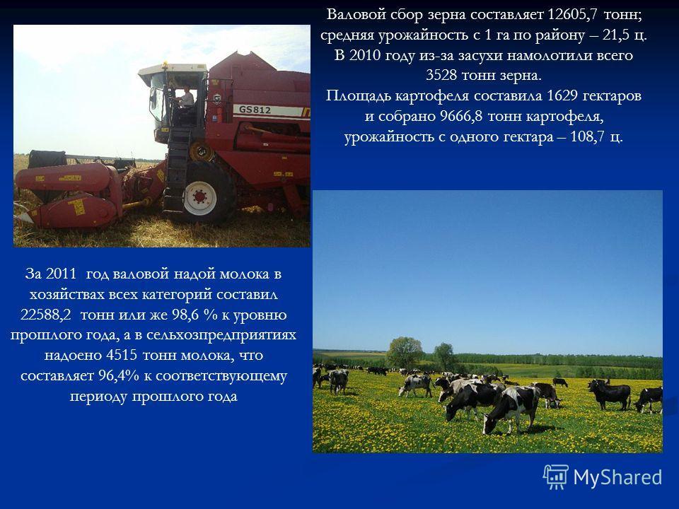 За 2011 год валовой надой молока в хозяйствах всех категорий составил 22588,2 тонн или же 98,6 % к уровню прошлого года, а в сельхозпредприятиях надоено 4515 тонн молока, что составляет 96,4% к соответствующему периоду прошлого года Валовой сбор зерн