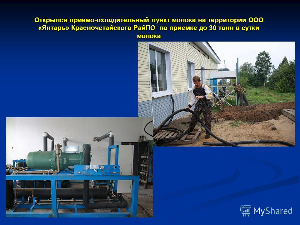 Открылся приемо-охладительный пункт молока на территории ООО «Янтарь» Красночетайского РайПО по приемке до 30 тонн в сутки молока
