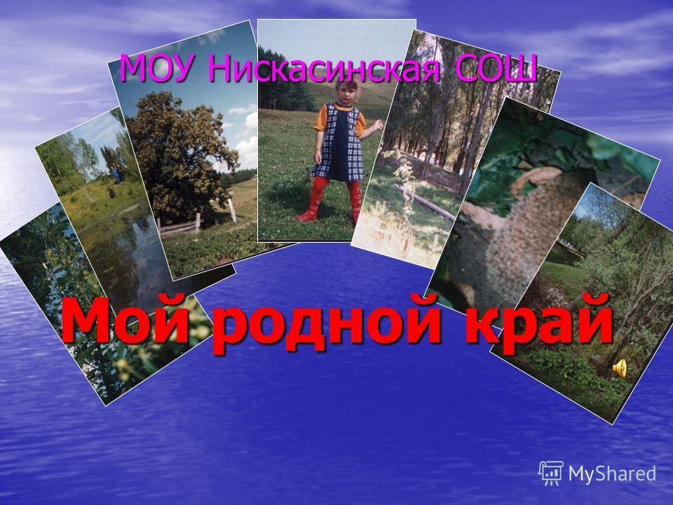 Мой родной край МОУ Нискасинская СОШ
