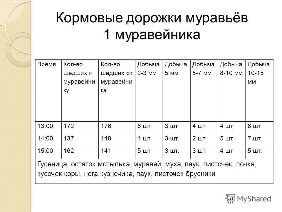 Время Кол-во шедших к муравейни ку Кол-во шедших от муравейни ка Добыча 2-3 мм Добыча 5 мм Добыча 5-7 мм Добыча 8-10 мм Добыча 10-15 мм 13:001721766 шт.3 шт4 шт 6 шт 14:001371484 шт.3 шт.2 шт5 шт7 шт. 15:001621415 шт3 шт. 4 шт5 шт. Гусеница, остаток
