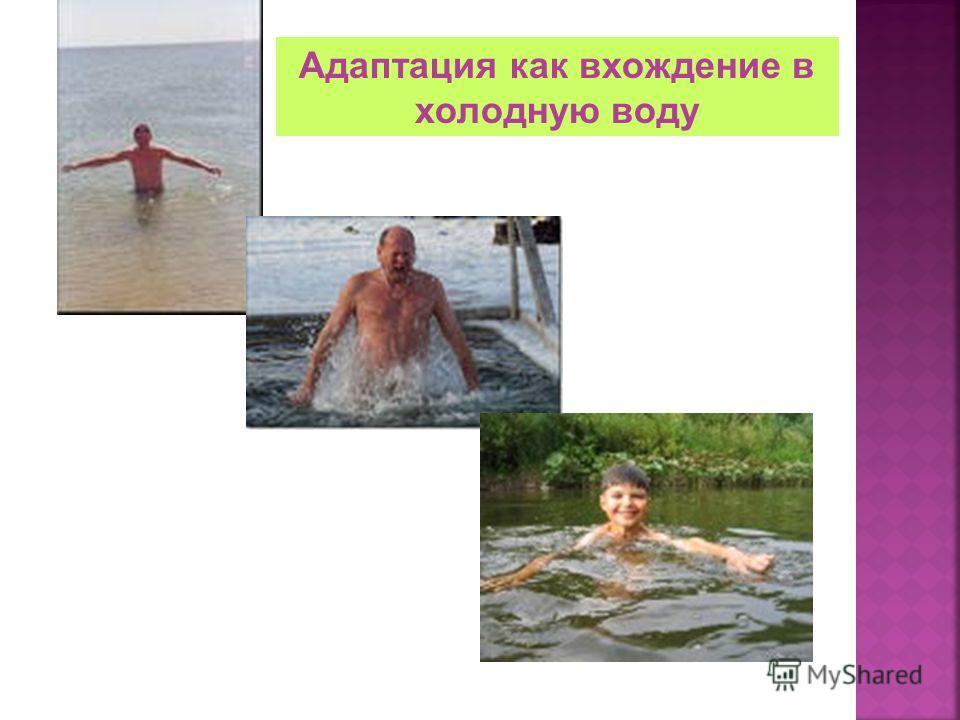 Адаптация как вхождение в холодную воду