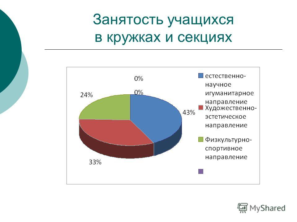 Занятость учащихся в кружках и секциях