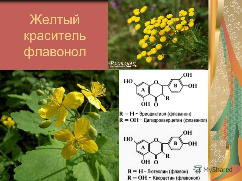 Желтый краситель флавонол