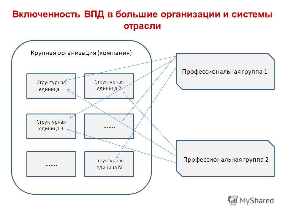 Включенность ВПД в большие организации и системы отрасли Крупная организация (компания) Структурная единица 2 Профессиональная группа 1 Структурная единица 1 ……. Структурная единица 3 ……. Структурная единица N Профессиональная группа 2
