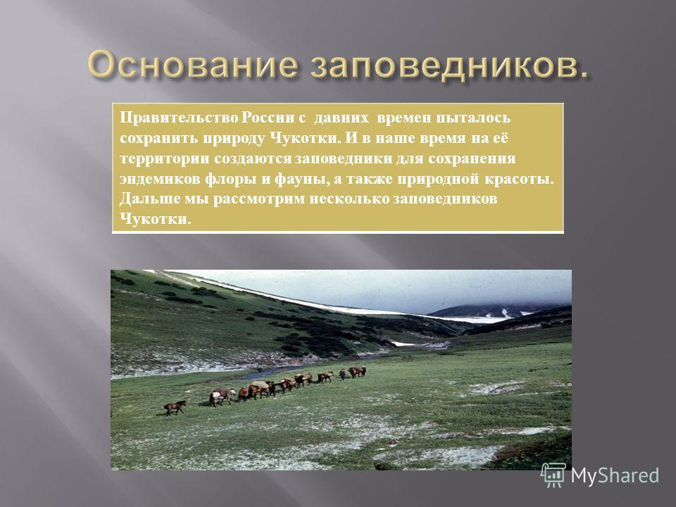 Правительство России с давних времен пыталось сохранить природу Чукотки. И в наше время на её территории создаются заповедники для сохранения эндемиков флоры и фауны, а также природной красоты. Дальше мы рассмотрим несколько заповедников Чукотки.