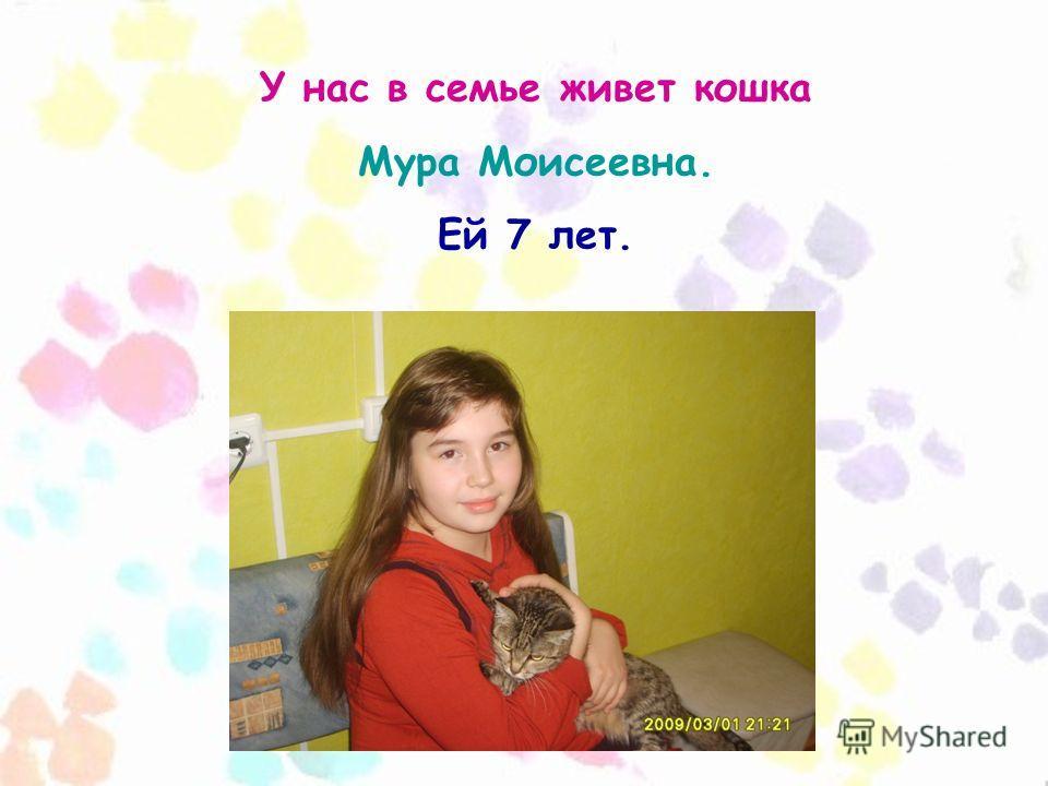 У нас в семье живет кошка Мура Моисеевна. Ей 7 лет.
