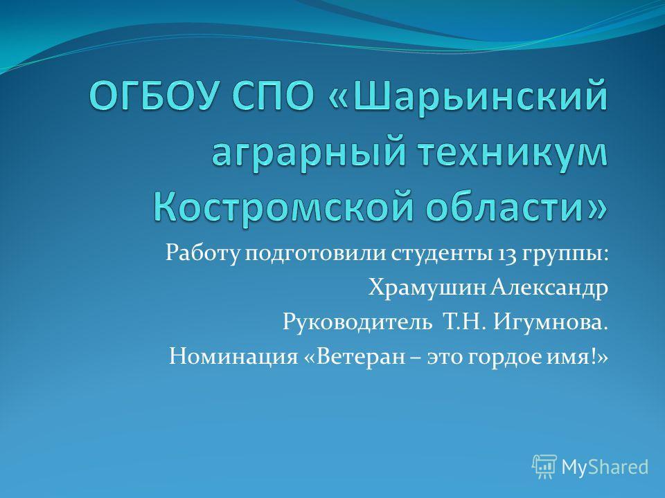 Работу подготовили студенты 13 группы: Храмушин Александр Руководитель Т.Н. Игумнова. Номинация «Ветеран – это гордое имя!»