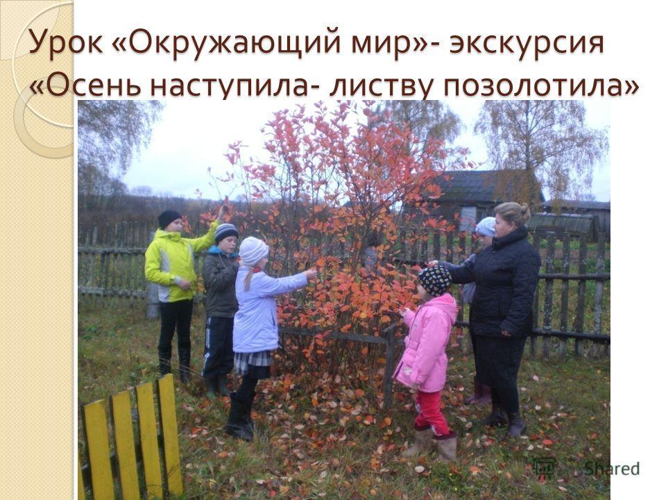 Урок « Окружающий мир »- экскурсия « Осень наступила - листву позолотила »