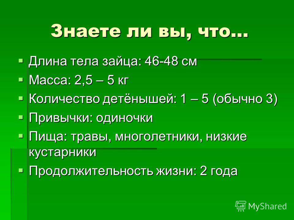 Знаете ли вы, что… Длина тела зайца: 46-48 см Длина тела зайца: 46-48 см Масса: 2,5 – 5 кг Масса: 2,5 – 5 кг Количество детёнышей: 1 – 5 (обычно 3) Количество детёнышей: 1 – 5 (обычно 3) Привычки: одиночки Привычки: одиночки Пища: травы, многолетники