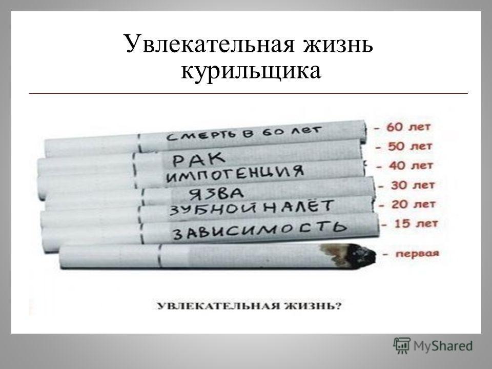 Увлекательная жизнь курильщика