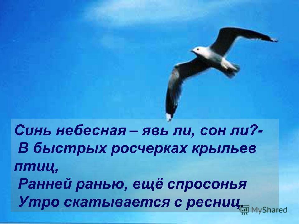 Синь небесная – явь ли, сон ли?- В быстрых росчерках крыльев птиц, Ранней ранью, ещё спросонья Утро скатывается с ресниц.