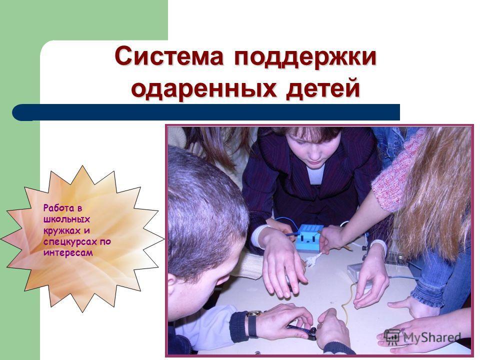 Система поддержки одаренных детей Работа в школьных кружках и спецкурсах по интересам
