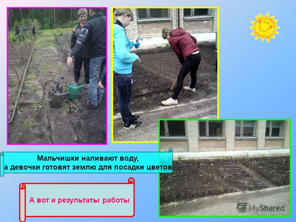 Мальчишки наливают воду, а девочки готовят землю для посадки цветов А вот и результаты работы