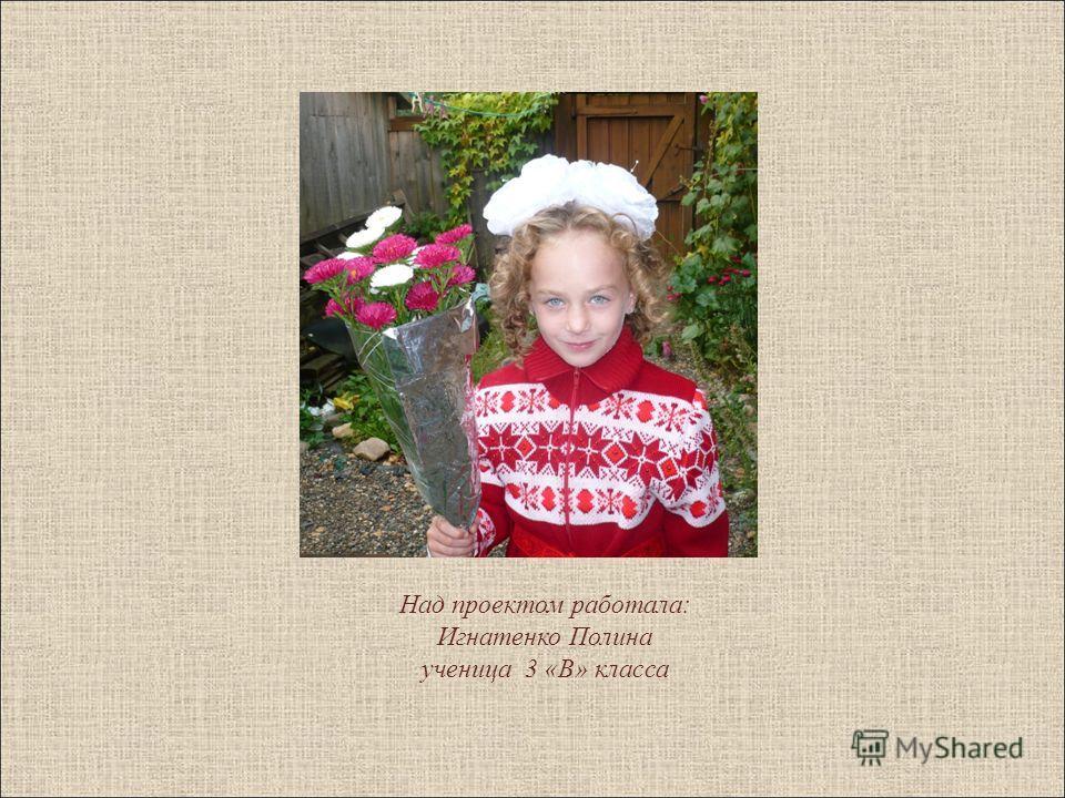 Над проектом работала: Игнатенко Полина ученица 3 «В» класса
