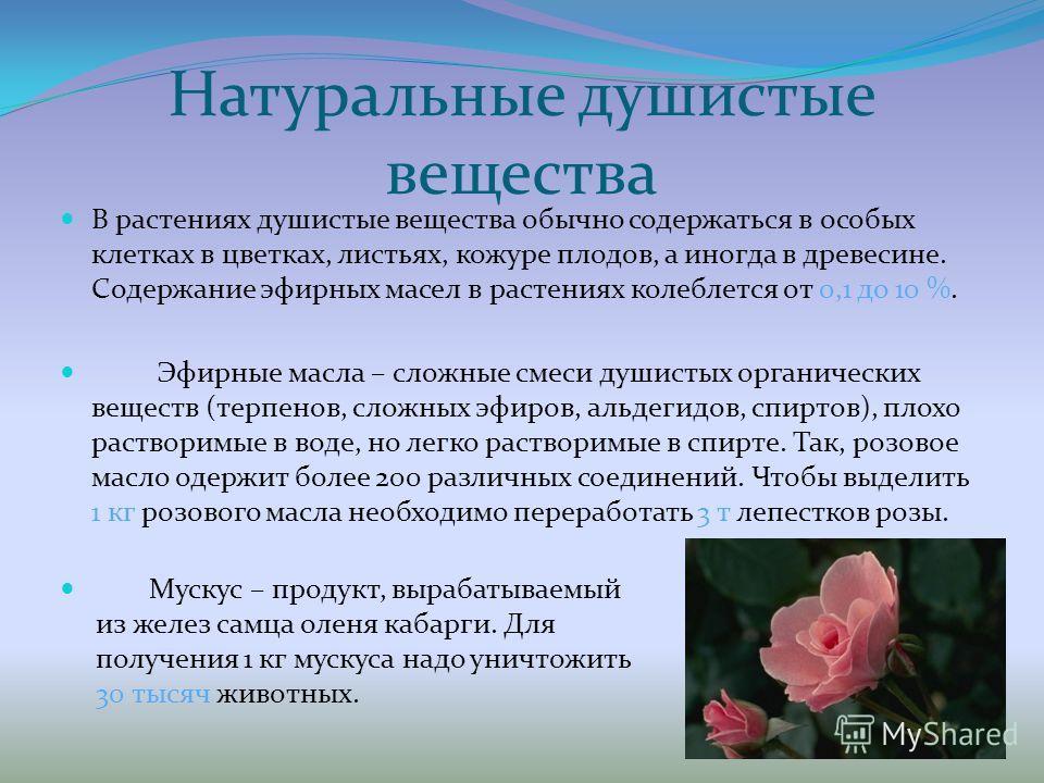 Натуральные душистые вещества В растениях душистые вещества обычно содержаться в особых клетках в цветках, листьях, кожуре плодов, а иногда в древесине. Содержание эфирных масел в растениях колеблется от 0,1 до 10 %. Эфирные масла – сложные смеси душ
