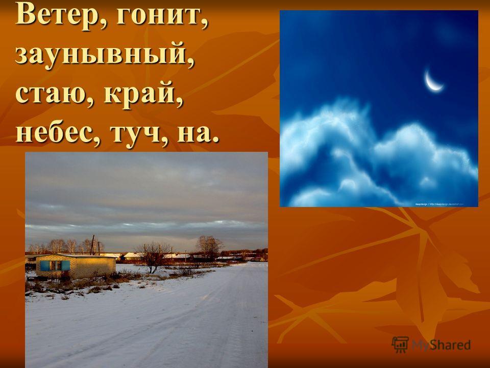 Ветер, гонит, заунывный, стаю, край, небес, туч, на.