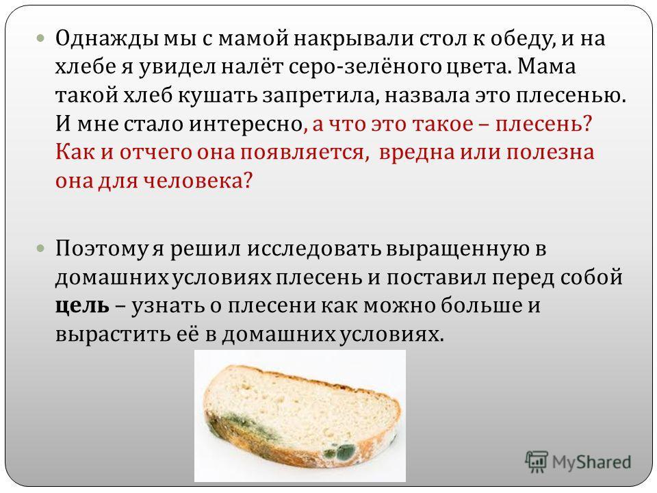 Однажды мы с мамой накрывали стол к обеду, и на хлебе я увидел налёт серо - зелёного цвета. Мама такой хлеб кушать запретила, назвала это плесенью. И мне стало интересно, а что это такое – плесень ? Как и отчего она появляется, вредна или полезна она