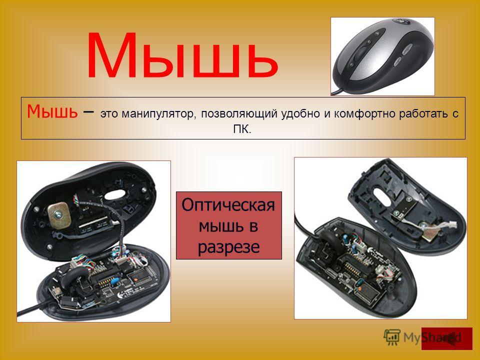 Мышь – это манипулятор, позволяющий удобно и комфортно работать с ПК. Оптическая мышь в разрезе