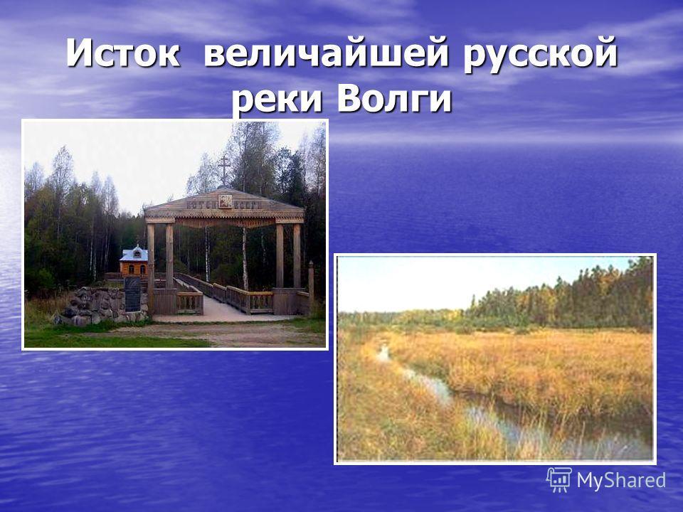 Исток величайшей русской реки Волги