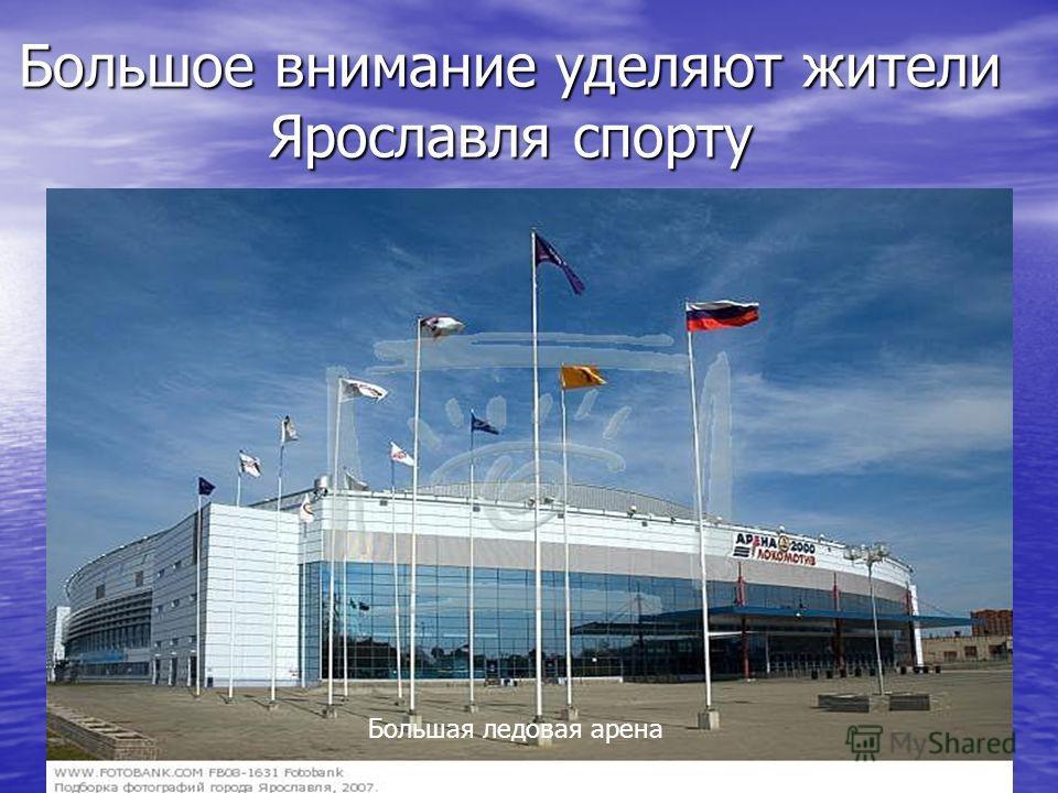Большое внимание уделяют жители Ярославля спорту Большая ледовая арена