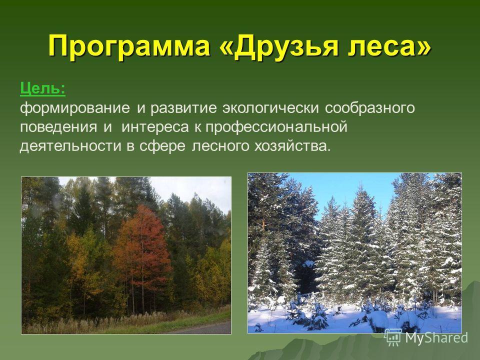 Программа «Друзья леса» Цель: формирование и развитие экологически сообразного поведения и интереса к профессиональной деятельности в сфере лесного хозяйства.