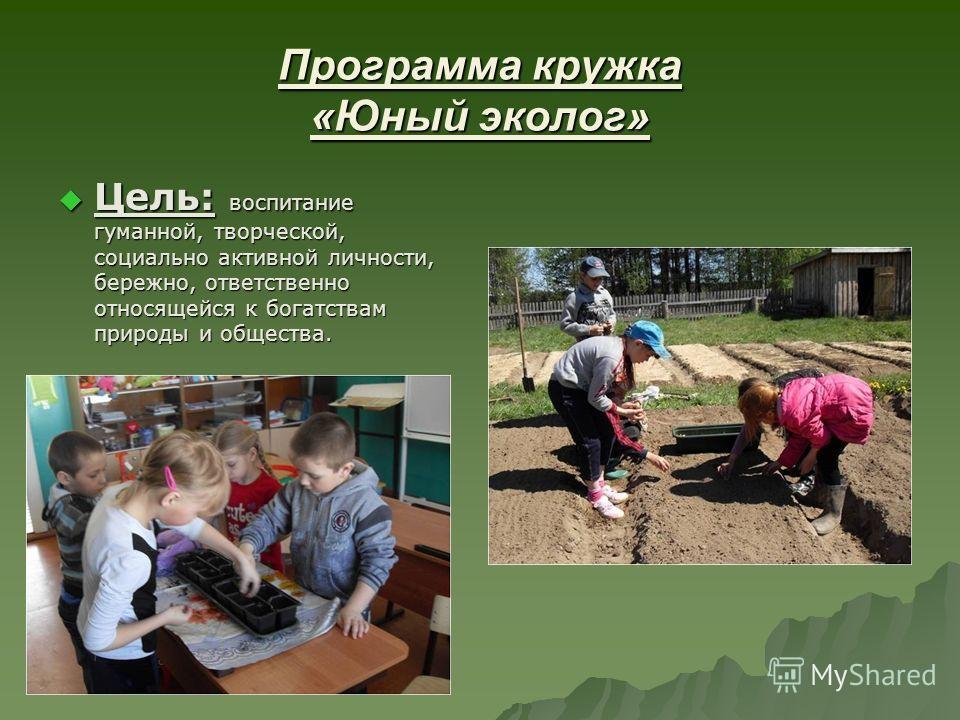 Программа кружка «Юный эколог» Цель: воспитание гуманной, творческой, социально активной личности, бережно, ответственно относящейся к богатствам природы и общества. Цель: воспитание гуманной, творческой, социально активной личности, бережно, ответст