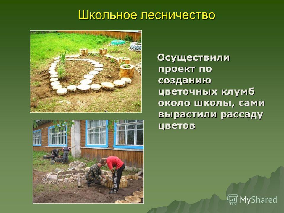 Школьное лесничество Осуществили проект по созданию цветочных клумб около школы, сами вырастили рассаду цветов Осуществили проект по созданию цветочных клумб около школы, сами вырастили рассаду цветов