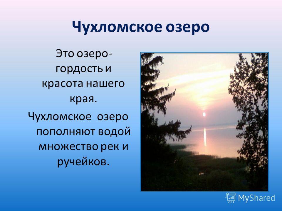 Чухломское озеро Это озеро- гордость и красота нашего края. Чухломское озеро пополняют водой множество рек и ручейков.