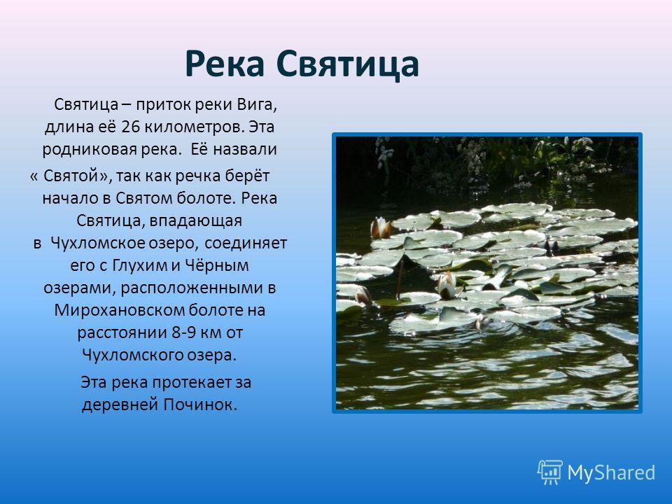 Река Святица Святица – приток реки Вига, длина её 26 километров. Эта родниковая река. Её назвали « Святой», так как речка берёт начало в Святом болоте. Река Святица, впадающая в Чухломское озеро, соединяет его с Глухим и Чёрным озерами, расположенным