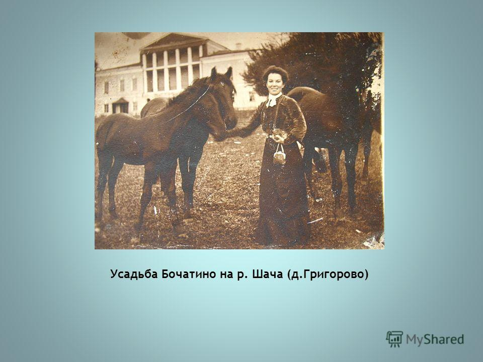 Усадьба Бочатино на р. Шача (д.Григорово)