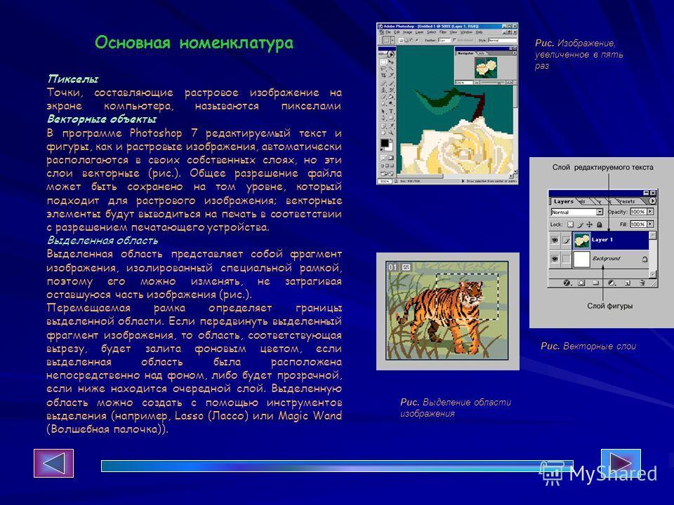Основная номенклатура Пикселы Точки, составляющие растровое изображение на экране компьютера, называются пикселами Векторные объекты В программе Photoshop 7 редактируемый текст и фигуры, как и растровые изображения, автоматически располагаются в свои