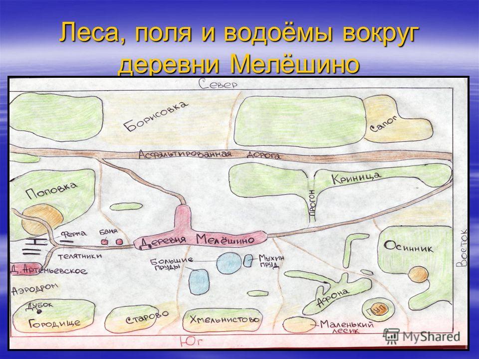 Леса, поля и водоёмы вокруг деревни Мелёшино
