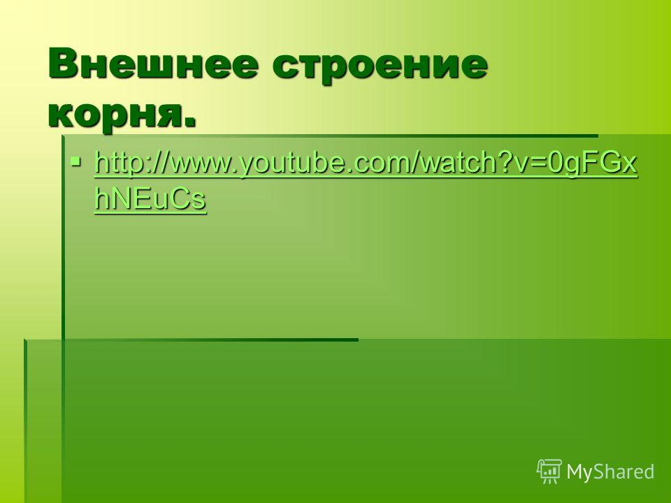 Внешнее строение корня. http://www.youtube.com/watch?v=0gFGx hNEuCs http://www.youtube.com/watch?v=0gFGx hNEuCs http://www.youtube.com/watch?v=0gFGx hNEuCs http://www.youtube.com/watch?v=0gFGx hNEuCs