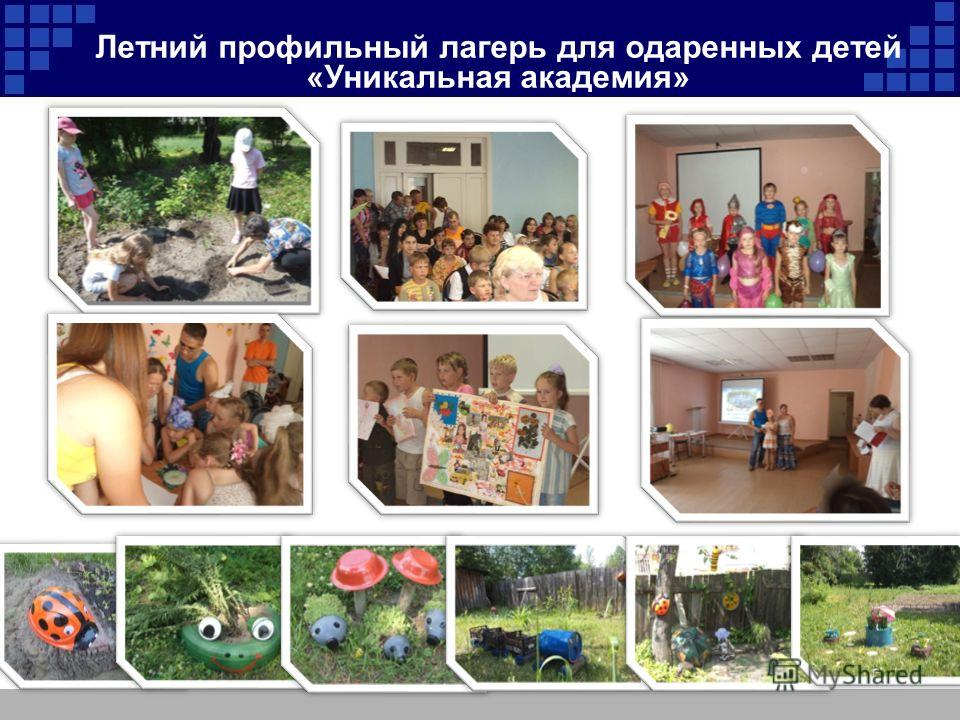 Летний профильный лагерь для одаренных детей «Уникальная академия»