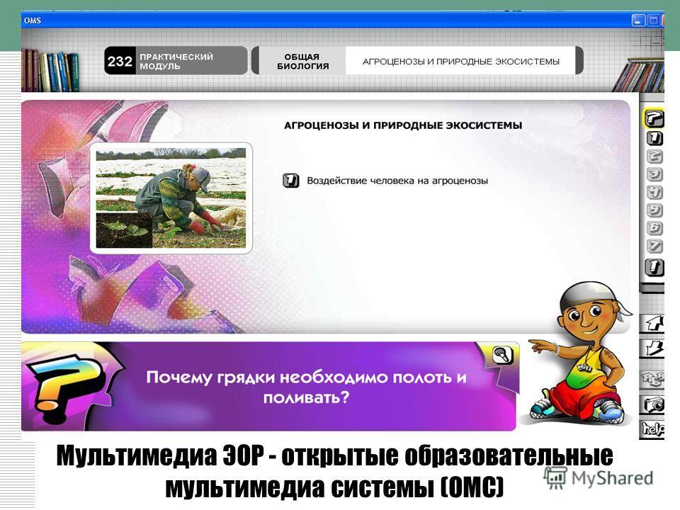 Мультимедиа ЭОР - открытые образовательные мультимедиа системы (ОМС)