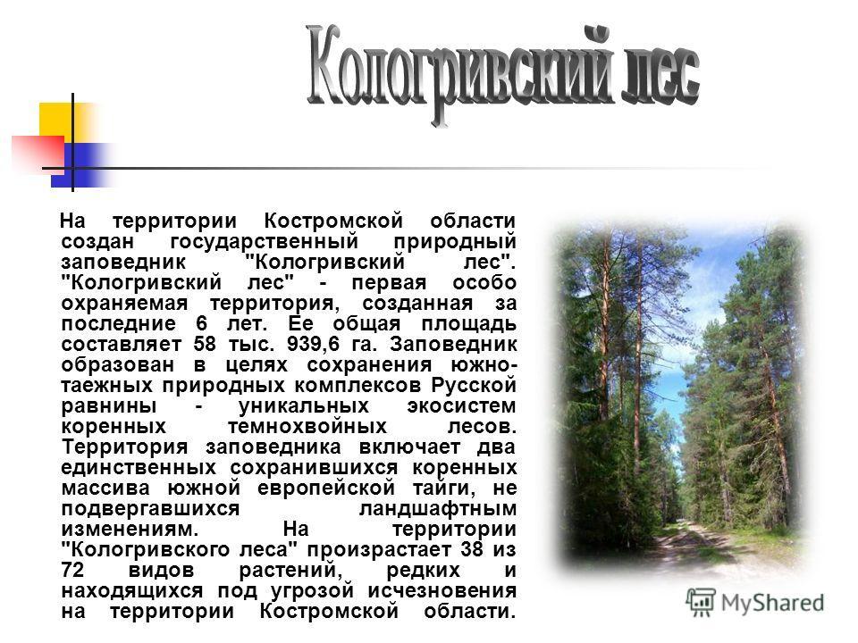 На территории Костромской области создан государственный природный заповедник