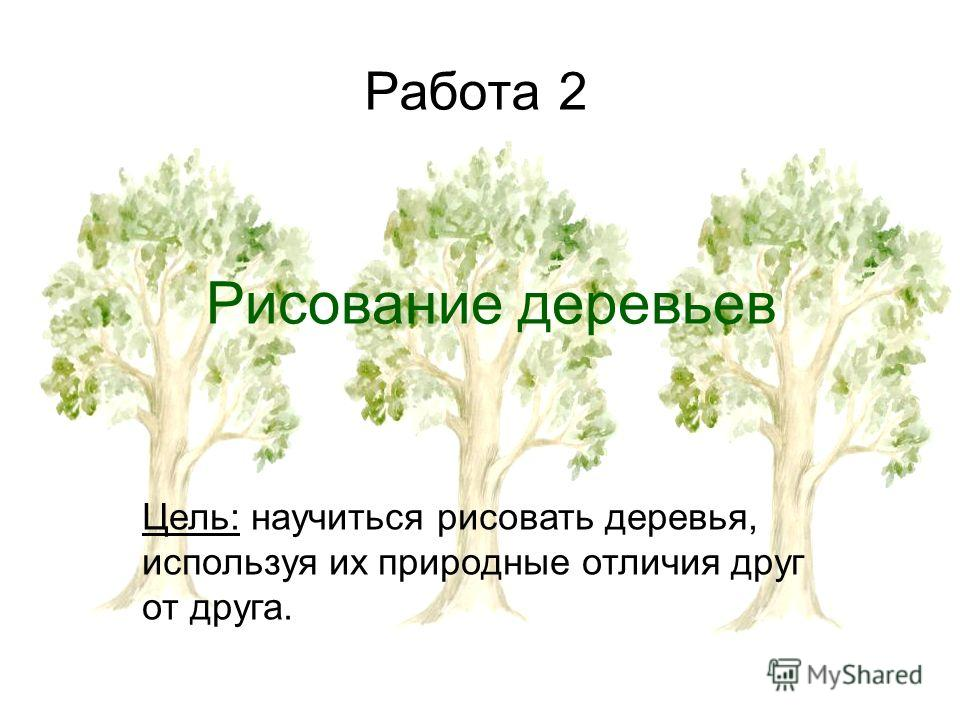 Работа 2 Рисование деревьев Цель: научиться рисовать деревья, используя их природные отличия друг от друга.