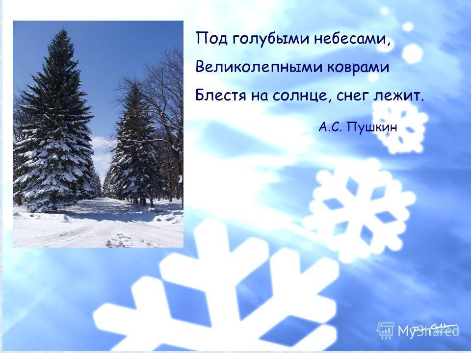 Под голубыми небесами, Великолепными коврами Блестя на солнце, снег лежит. А.С. Пушкин