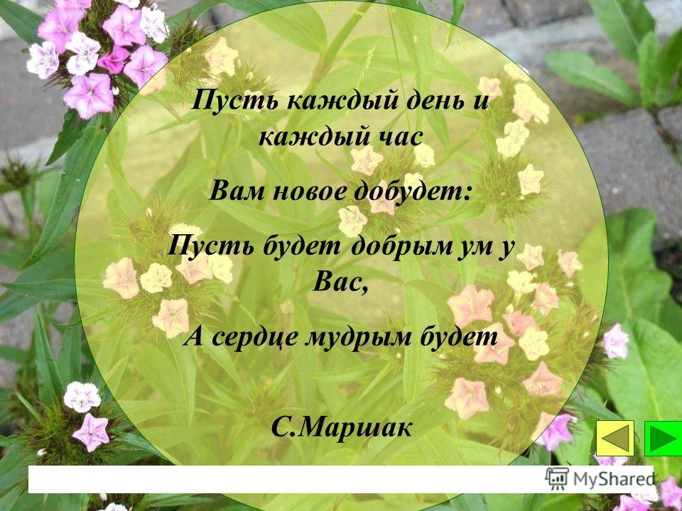 Пусть каждый день и каждый час Вам новое добудет: Пусть будет добрым ум у Вас, А сердце мудрым будет С.Маршак