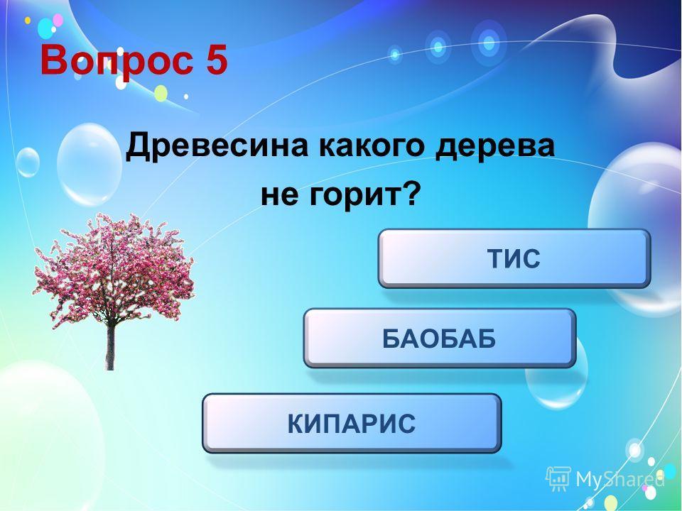 Вопрос 5 Древесина какого дерева не горит? БАОБАБ ТИС КИПАРИС