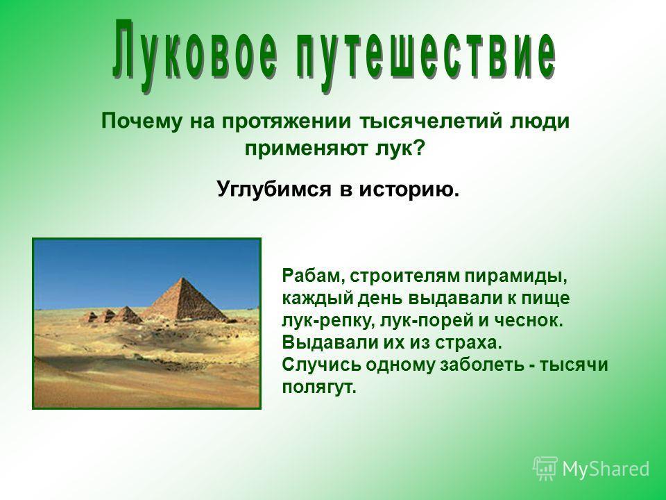 Почему на протяжении тысячелетий люди применяют лук? Рабам, строителям пирамиды, каждый день выдавали к пище лук-репку, лук-порей и чеснок. Выдавали их из страха. Случись одному заболеть - тысячи полягут. Углубимся в историю.