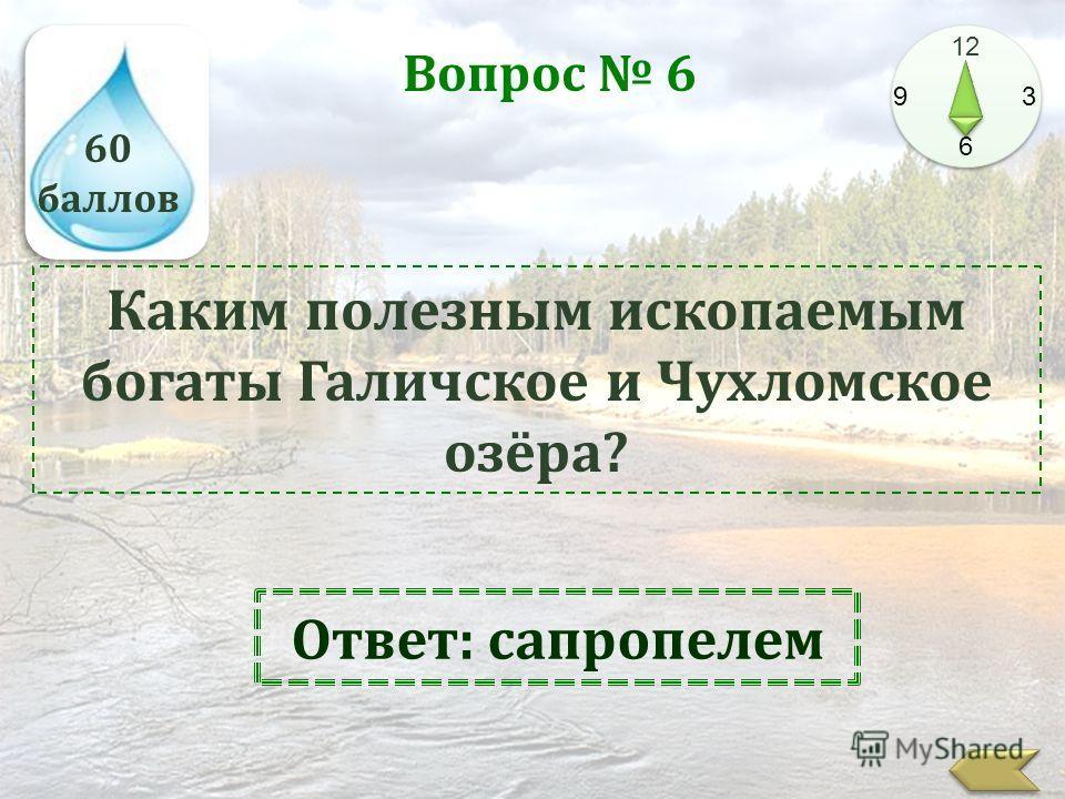 60 баллов 12 9 3 6 Вопрос 6 Каким полезным ископаемым богаты Галичское и Чухломское озёра? Ответ: сапропелем