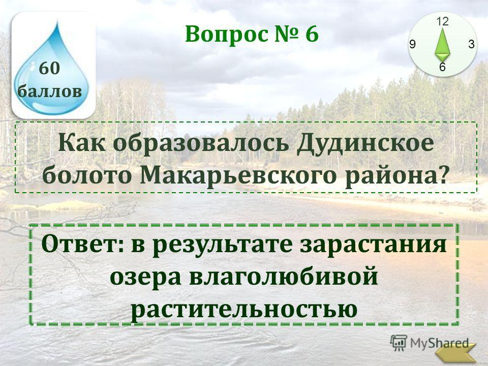 60 баллов 12 9 3 6 Вопрос 6 Как образовалось Дудинское болото Макарьевского района? Ответ: в результате зарастания озера влаголюбивой растительностью