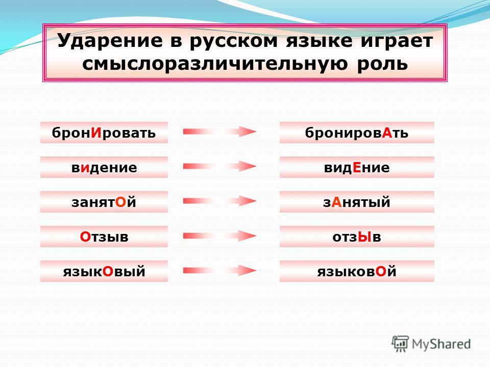 Ударение в русском языке играет смыслоразличительную роль ОтзывотзЫв занятОйзАнятый бронИроватьбронировАть видениевидЕние языкОвыйязыковОй