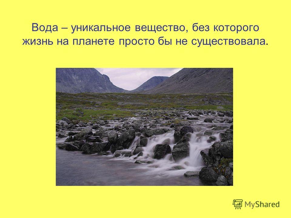 Вода – уникальное вещество, без которого жизнь на планете просто бы не существовала.