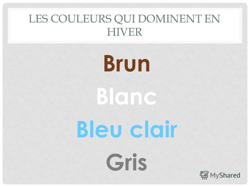 LES COULEURS QUI DOMINENT EN HIVER Brun Blanc Bleu clair Gris