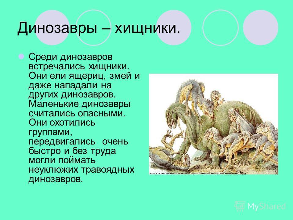 Динозавры – хищники. Среди динозавров встречались хищники. Они ели ящериц, змей и даже нападали на других динозавров. Маленькие динозавры считались опасными. Они охотились группами, передвигались очень быстро и без труда могли поймать неуклюжих траво