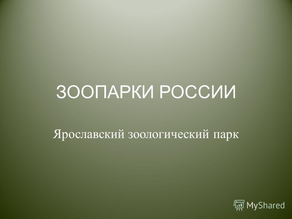 ЗООПАРКИ РОССИИ Ярославский зоологический парк