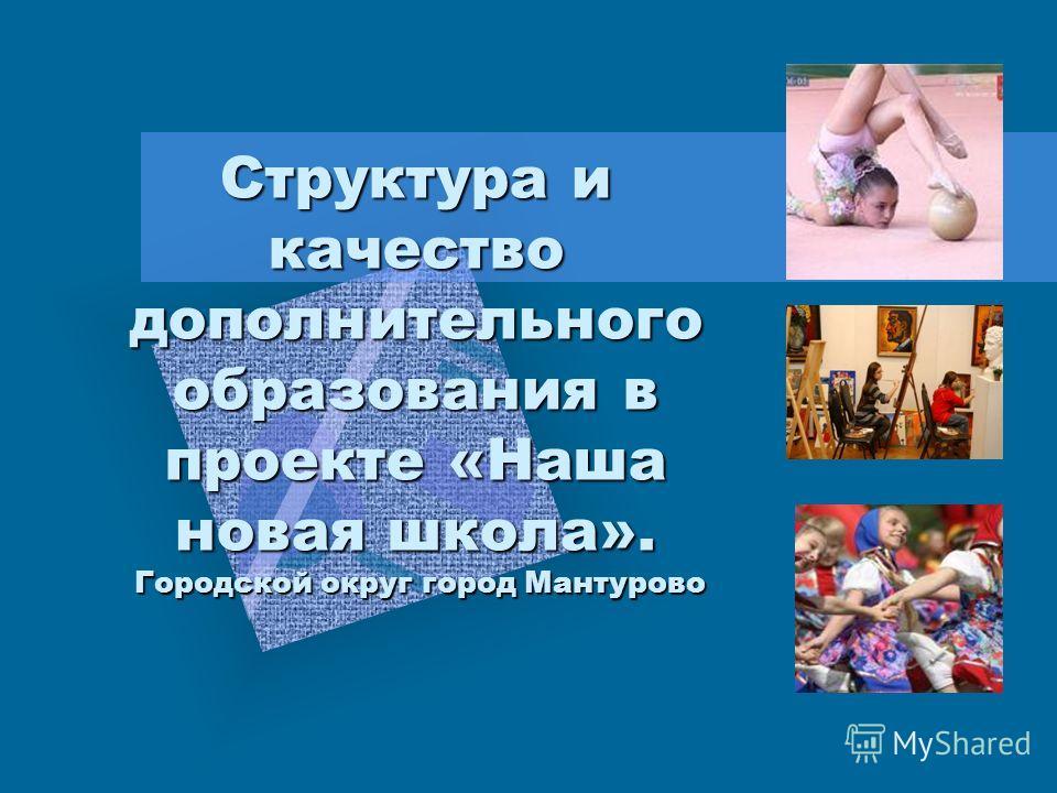 Структура и качество дополнительного образования в проекте «Наша новая школа». Городской округ город Мантурово